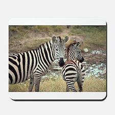 Z-zebras Mousepad