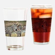 Z-zebras Drinking Glass