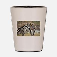 Z-zebras Shot Glass