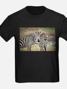 Z-zebras T