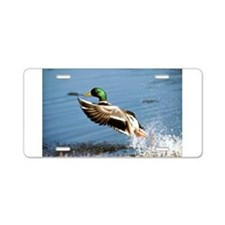 Mallard Moving On Aluminum License Plate
