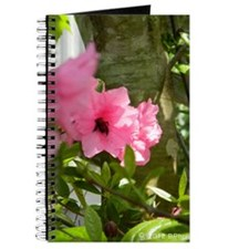 Honey Bee Azalea Journal