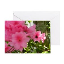 Honey Bee Azalea Greeting Card