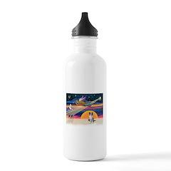 XmasStar/Border Collie Water Bottle