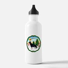 Take Off1/German Shepherd #14 Water Bottle