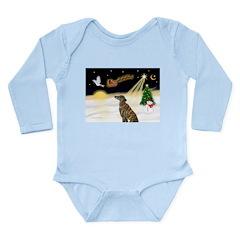 Night Flight/Greyhound (brin0 Long Sleeve Infant B