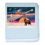 XmasStar/ Newfie baby blanket