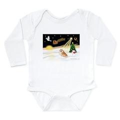 Night Flight/Pomeranian Long Sleeve Infant Bodysui
