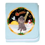 Night Flight/Silver Poodle baby blanket