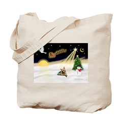 Night Flight/ Silky Ter 14 Tote Bag