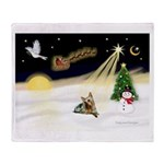 Night Flight/ Silky Ter 14 Throw Blanket