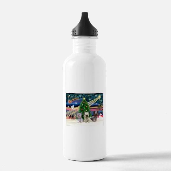 Xmas Magic & Skye Trio Sports Water Bottle