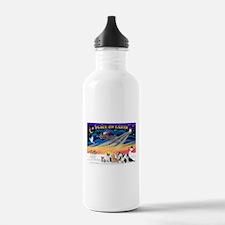 XmasSunrise/6 Corgis Water Bottle