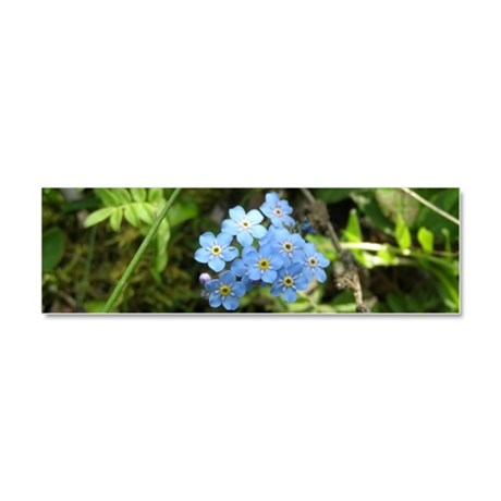 Forget-Me-Not #01 Car Magnet 10 x 3