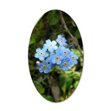 Forget-Me-Not #01 22x14 Oval Wall Peel
