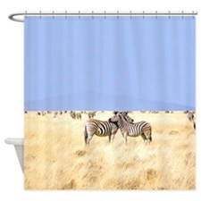 Zebras Namibia African Shower Curtain