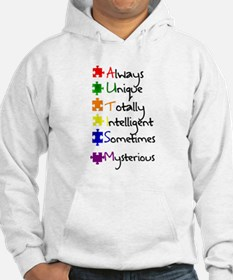 What Autism Means To Me Jumper Hoody