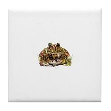 Pac man frog Tile Coaster