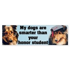 Smart Shelties