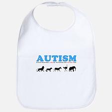 Autism, Around Since Noah Lin Bib