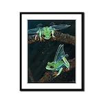 Wishing Frog II Framed Panel Print