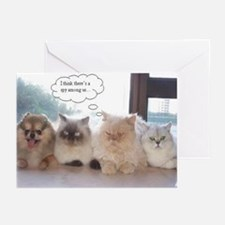 Dogs in Cars Greeting Cards (Pk of 10)