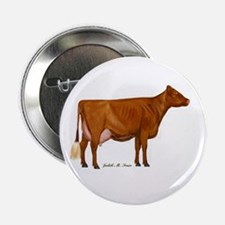 "Shorthorn Trans 2.25"" Button"