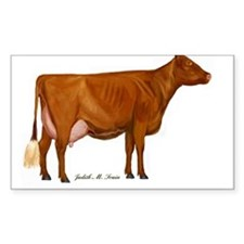 Shorthorn Trans Decal