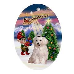 Santa's Take-off & Maltese Oval Ornament
