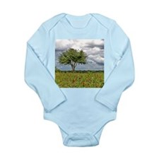 Wildflowers 1 Long Sleeve Infant Bodysuit