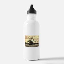 Texas Tree Water Bottle