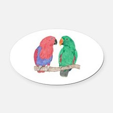 Cute Eclectus Oval Car Magnet
