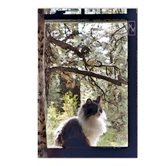 Pandora Outside the Window Postcards (Package of 8