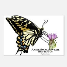 Anise Swallowtail Butterfly Postcards (Package of