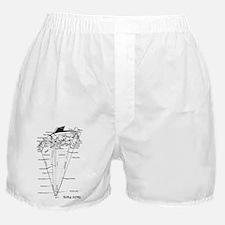UPSIDE-down Yacht Parts Boxer Shorts