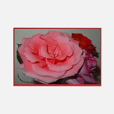 Rose Trio Rectangle Magnet