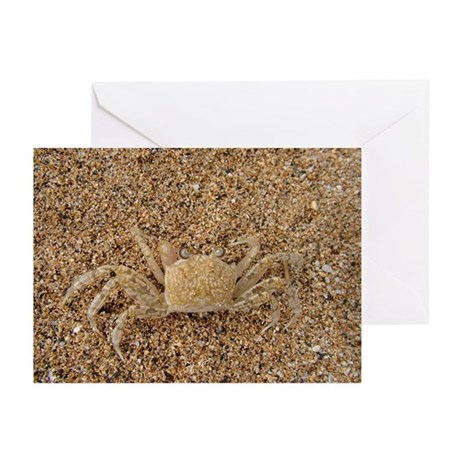 Sand Crab Greeting Cards (Pk of 10)