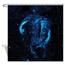 Magnetic Field Shower Curtain