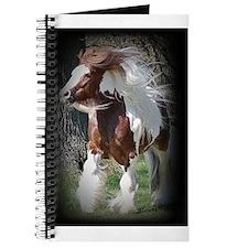 Tonto Notebook