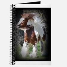 Tonto Notebook