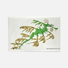 Sea Dragon Rectangle Magnet