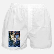 Princess and the Gnomes Boxer Shorts