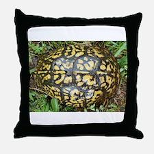 Shiny Box Turtle Throw Pillow
