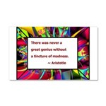 Genius and Madness Car Magnet 20 x 12