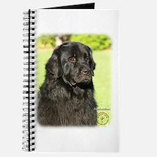 Newfoundland 9M099D-018 Journal