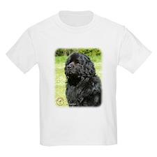 Newfoundland 9T086D-067_2 T-Shirt