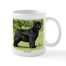 Newfoundland 9T086D-088 Mug