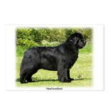Newfoundland 9T086D-088 Postcards (Package of 8)