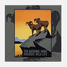 National Parks Preserve Wild Life Tile Coaster