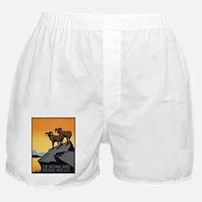 National Parks Preserve Wild Life Boxer Shorts